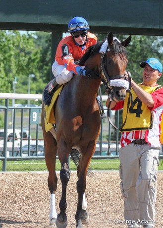 Miss Moonshine and Trevor McCarthy in the paddock at Parx on June 24, 2014