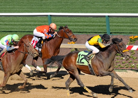Miss Moonshine finishes a close 3rd at Pimlico in her first start in 11 months on April 24, 2014