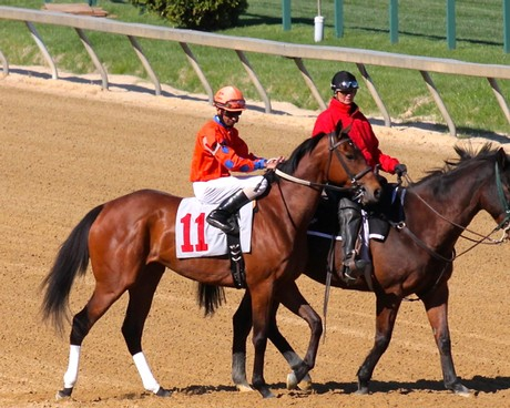 Miss Moonshine made her first start in 11 months at Pimlico on April 24, 2014. She finished 3rd.