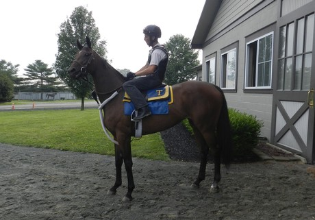 On her way to the track at Fair Hill