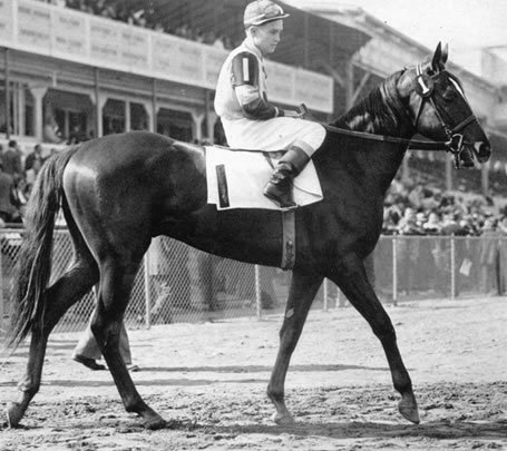 SAGGY's racing career included a defeat of Triple Crown winner Citation in 1948 -- Citation's only loss in 20 starts that season.