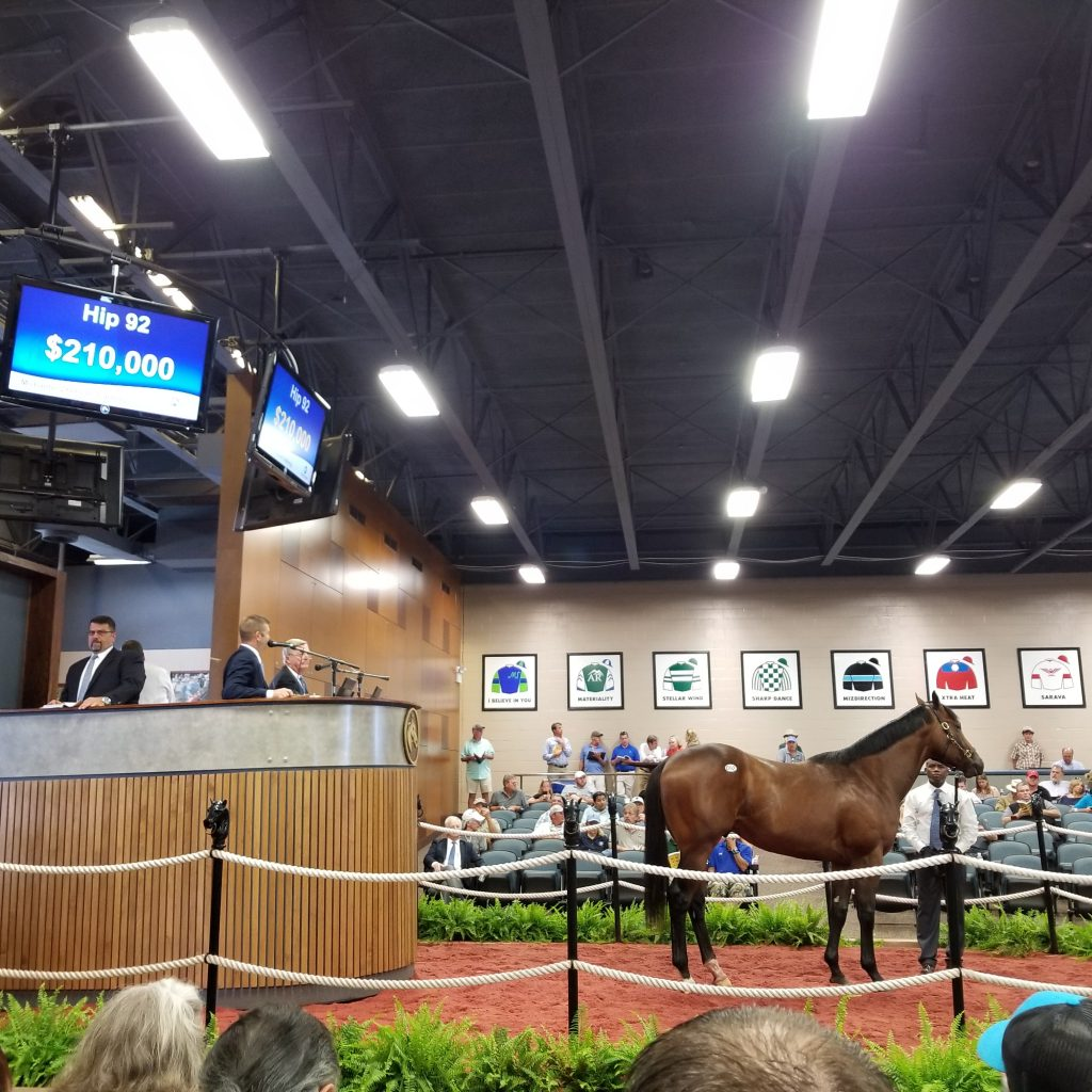 Call Paul sells for $210,000 at the Fasig-Tipton May 2-year-olds in Training Sale.