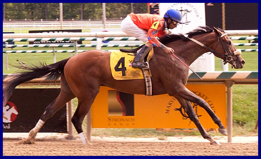 Flash McCaul's maiden win (2013 An T M)
