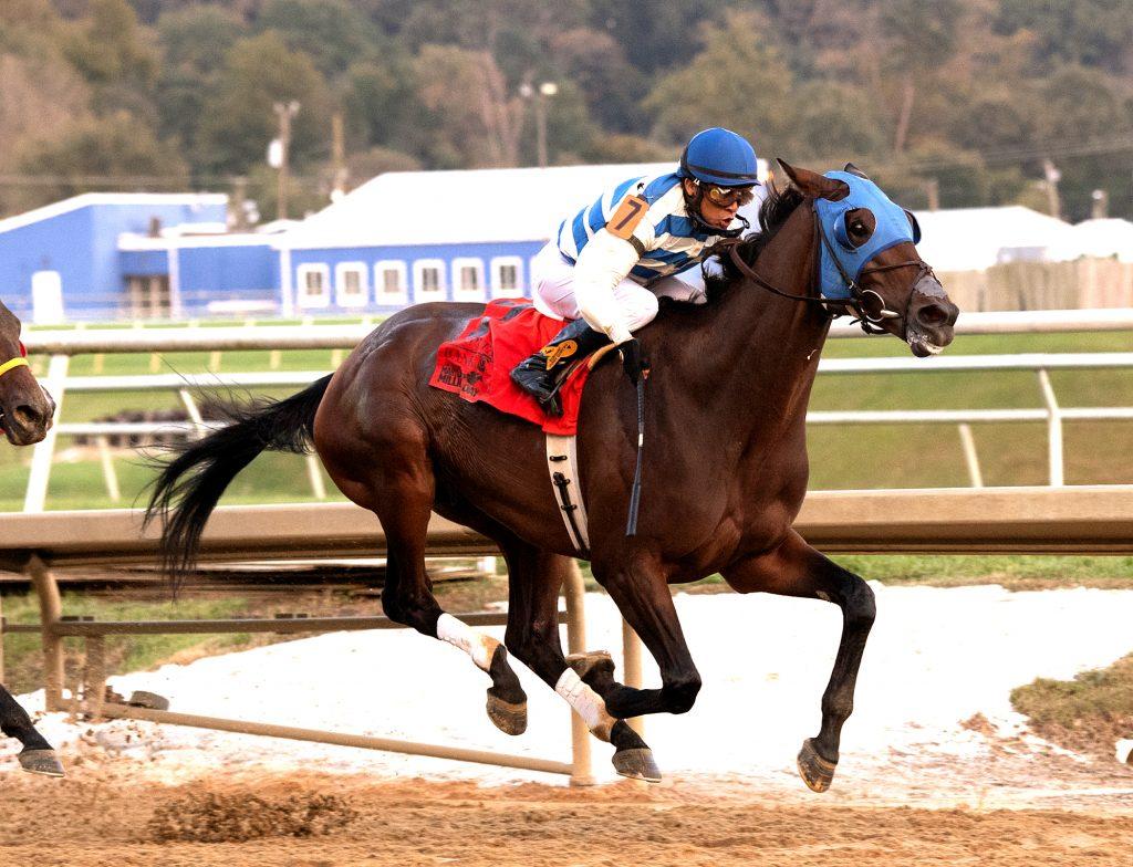 Saratoga Bob wins MD Million Classic