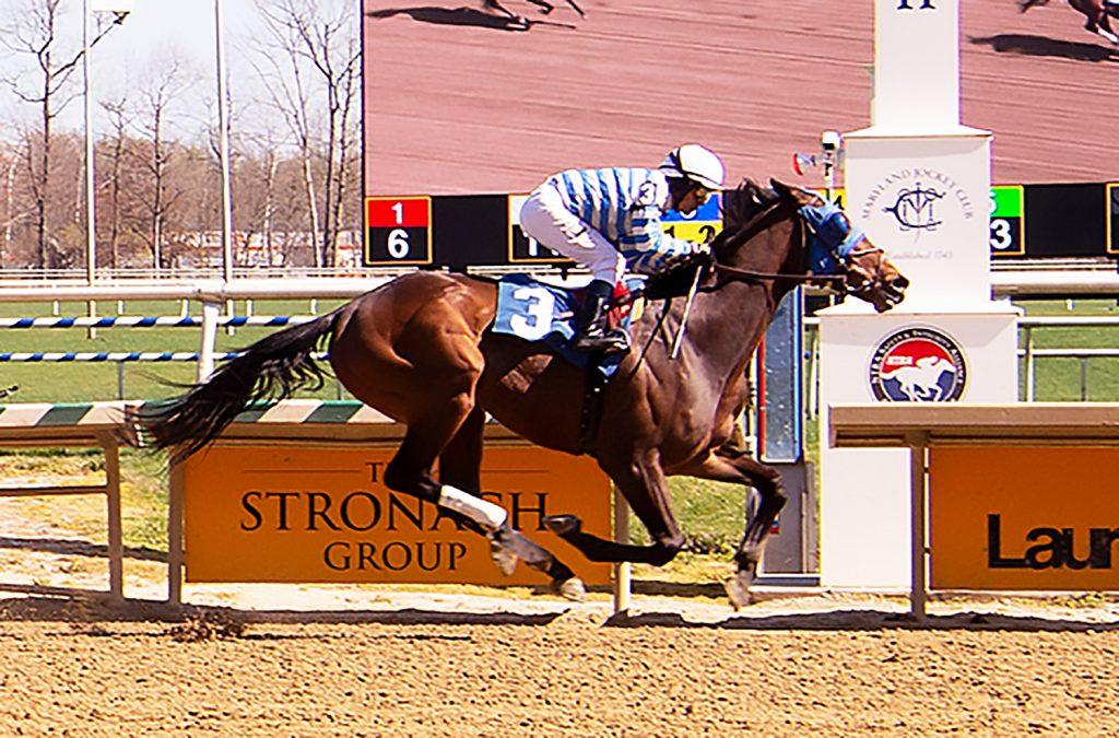 Saratoga Bob maiden win